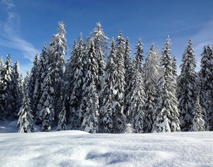 Inverno a San Vito di Cadore